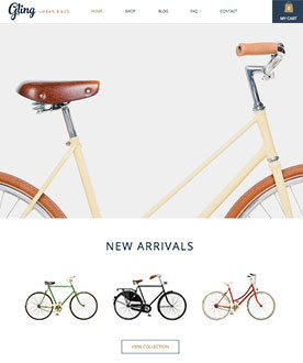 Bicycle Store Website